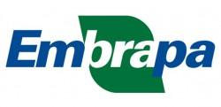 Empresa Brasileira de Pesquisa Agropecuária (Embrapa)
